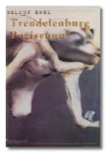 Trendelenburg Pozisyonu